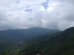 beautiful Montreat scenery