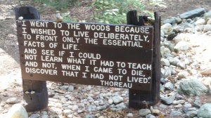 Walden Pond was amazing.