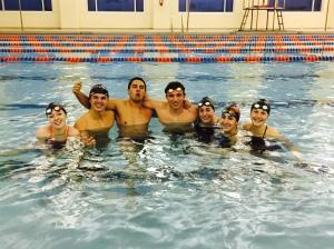 Amazing swimmers.